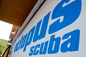 scuba diving marketing and graphic design