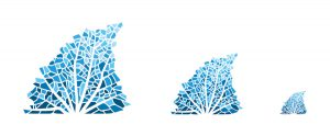 scuba diving marketing and logo & graphic design by 50bar scuba design