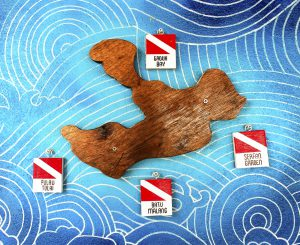 scuba diving map by 50bar scuba design
