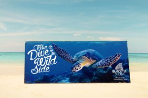 scuba diving marketing & design by 50bar scuba design