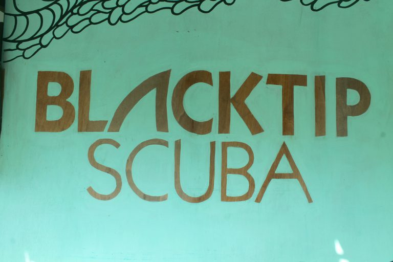 scuba diving center mural graffiti shopfront decoration