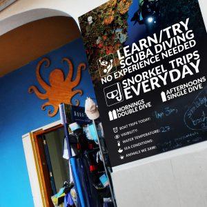 scuba diving center shop decoration