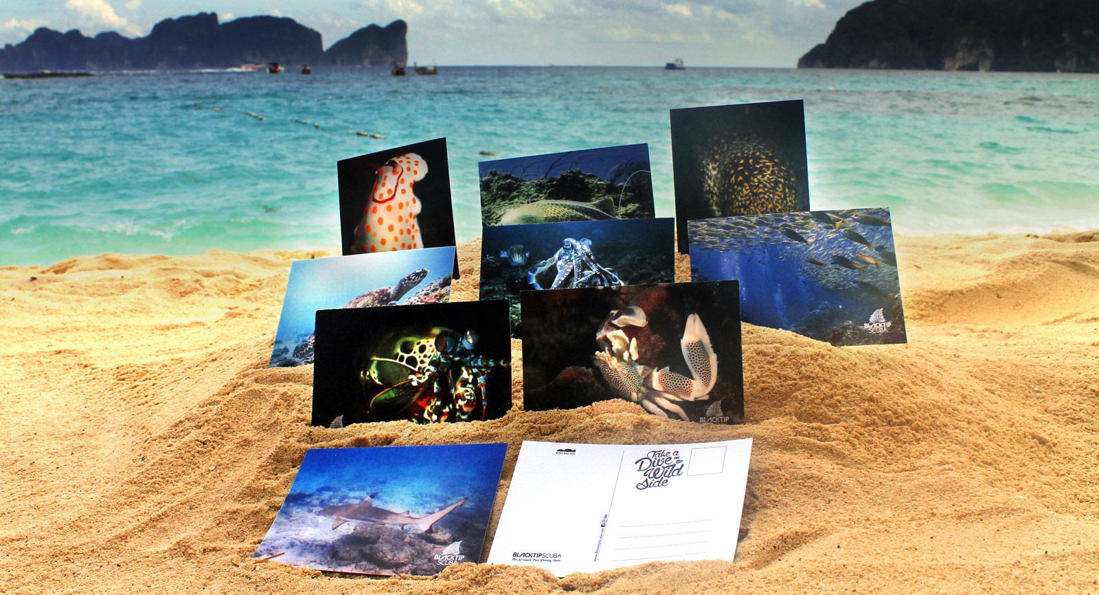 scuba diving dive center merchandising
