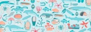 marine illustrations by 50bar scuba design